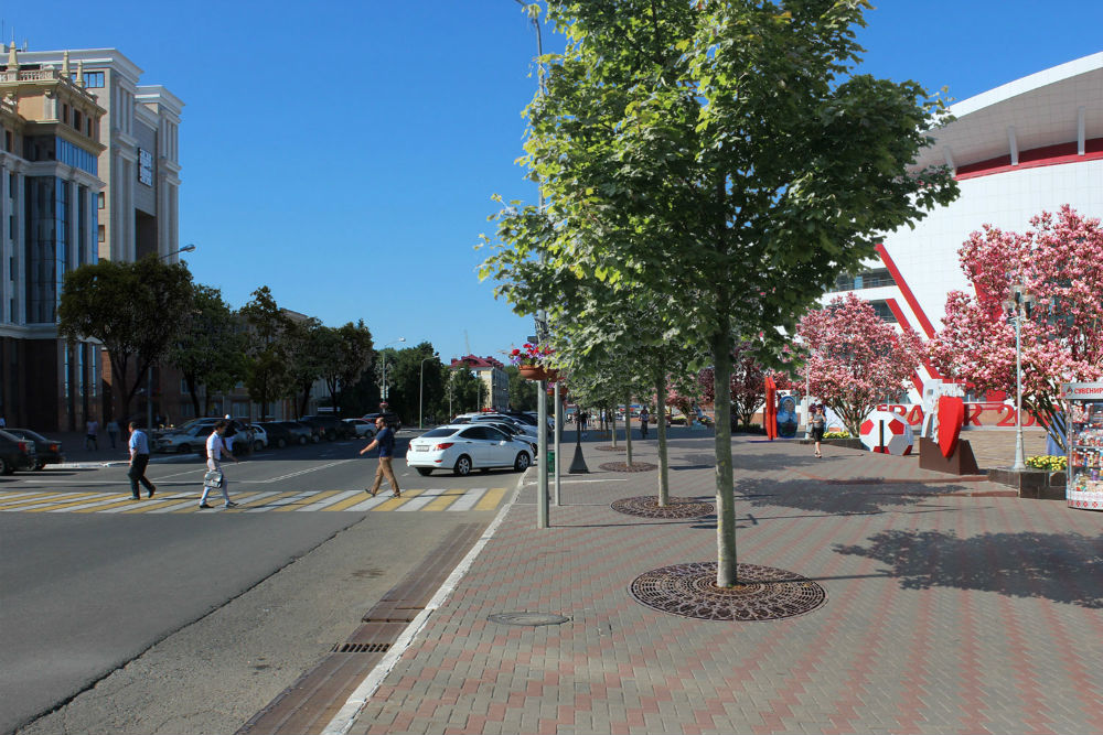 b Город  не болей   2   b  как озеленить   центр Саранска    9