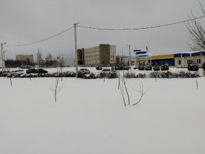 Куда с мячом зимой  top 7 площадок в городе  где можно поиграть в футбол yalga5