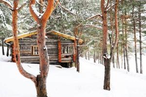 Не курорт  но тоже ничего  где в Мордовии можно отдохнуть вдали от Саранска база отдыха карельская