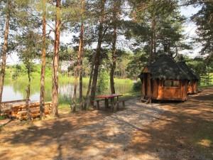 Не курорт  но тоже ничего  где в Мордовии можно отдохнуть вдали от Саранска карельская
