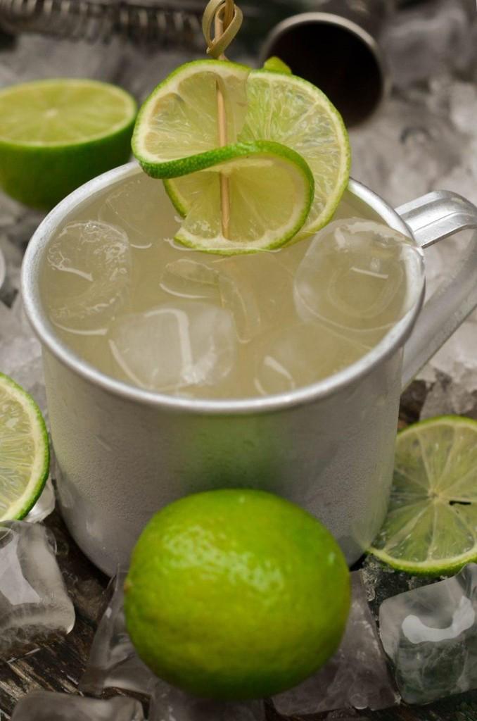 Имбирно лимонная мечта  12 рецептов алкогольных коктейлей мул