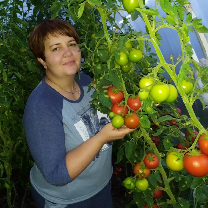 Огородный карантин  как вырастить съедобный урожай на балконе и участке  4