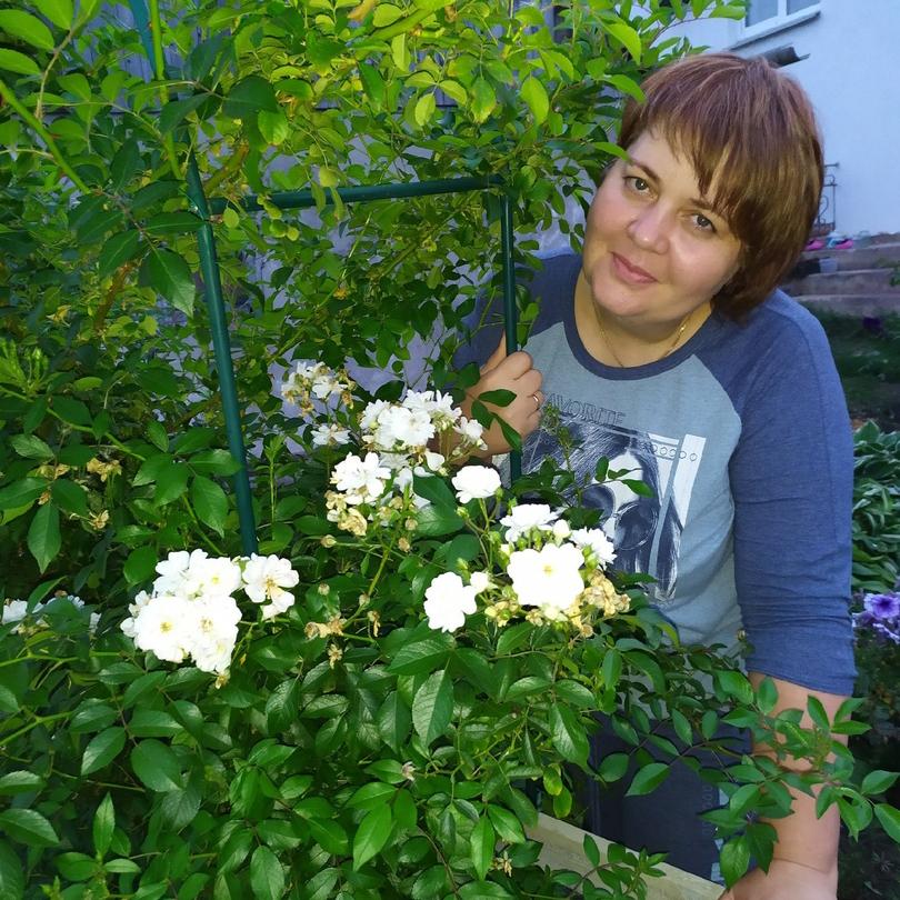 Огородный карантин  как вырастить съедобный урожай на балконе и участке  5