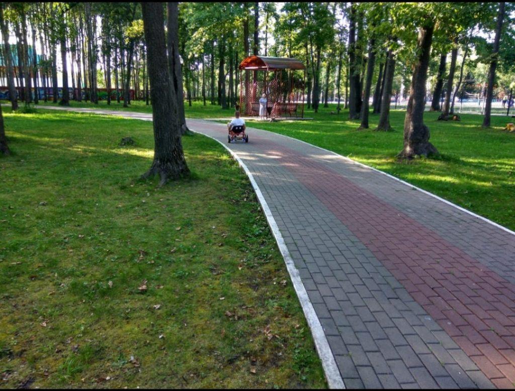 b Прогуляемся   b  топ 7 лесных зон Саранска