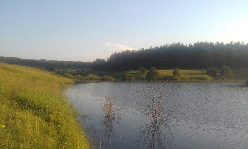 b Ты неси меня река   b  где можно искупаться этим летом