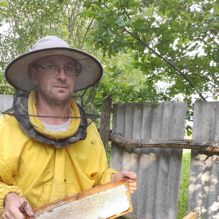 b Где купить мед в Саранске  b  и что о нем нужно знать Владимир Белоглазов