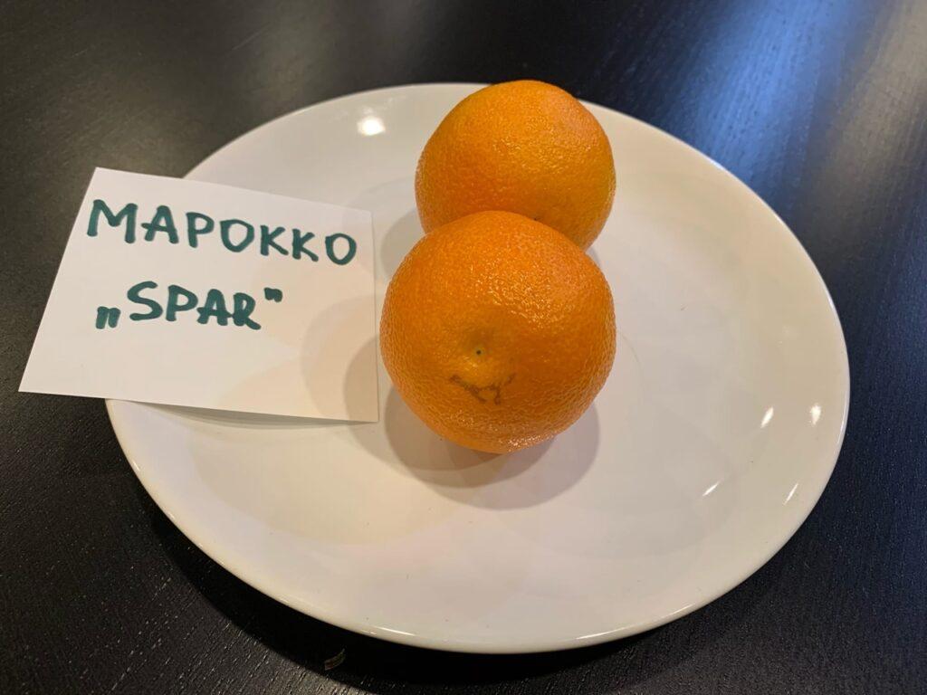 b Заберу тебя с собою в Новый Год   b  мы попробовали 17 мандаринов и нашли те  которые должны оказаться на вашем столе в новогоднюю ночь