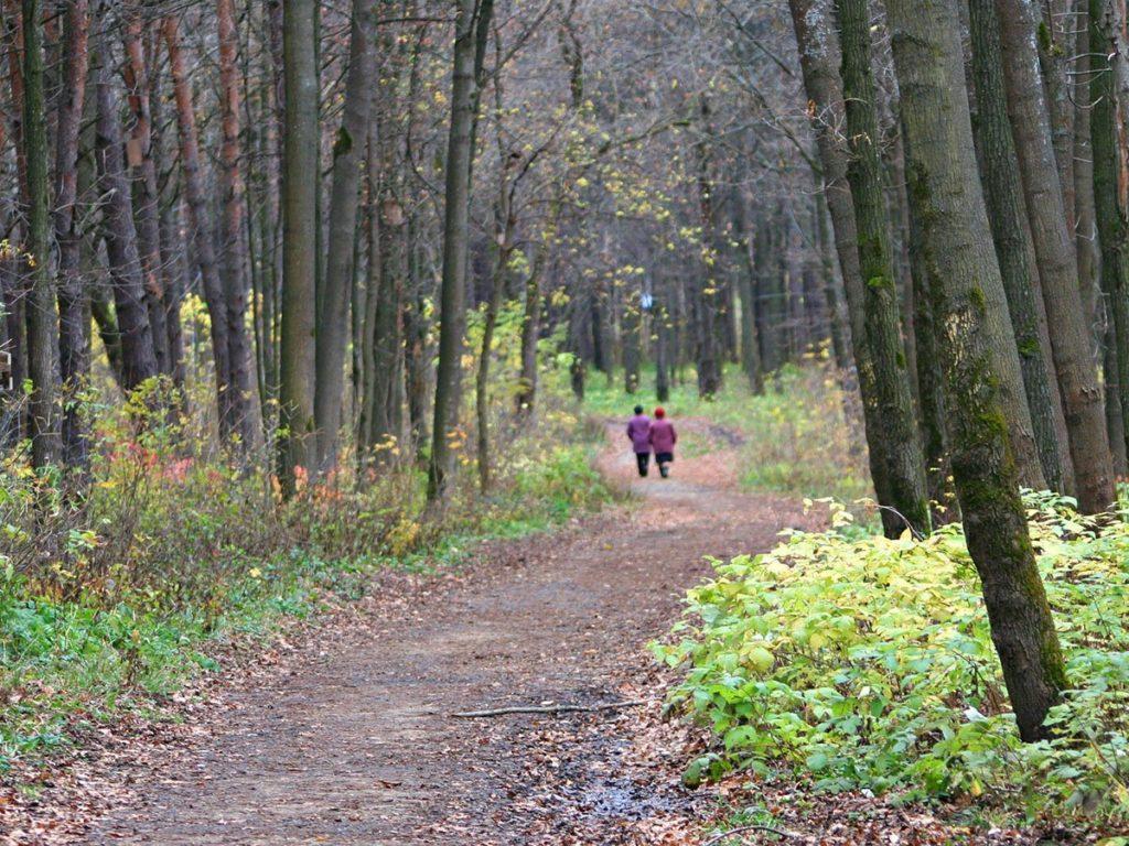 b Летний чилл   b  отдыхаем на природе в Мордовии