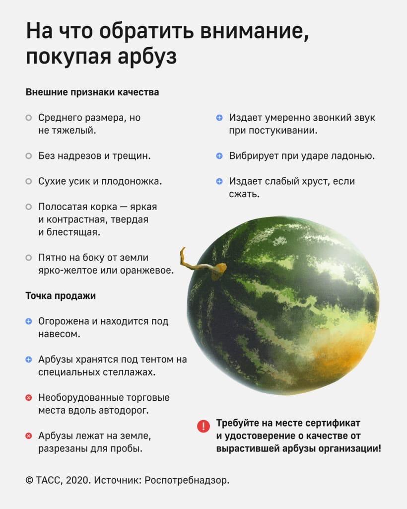 b  Арбуз может позволить себе любой человек  любого уровня достатка    b  топ 10 арбузов  которые можно купить в Саранске