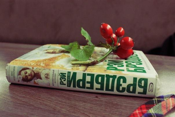 Какие   книги    читают жители Саранска 9_knigi