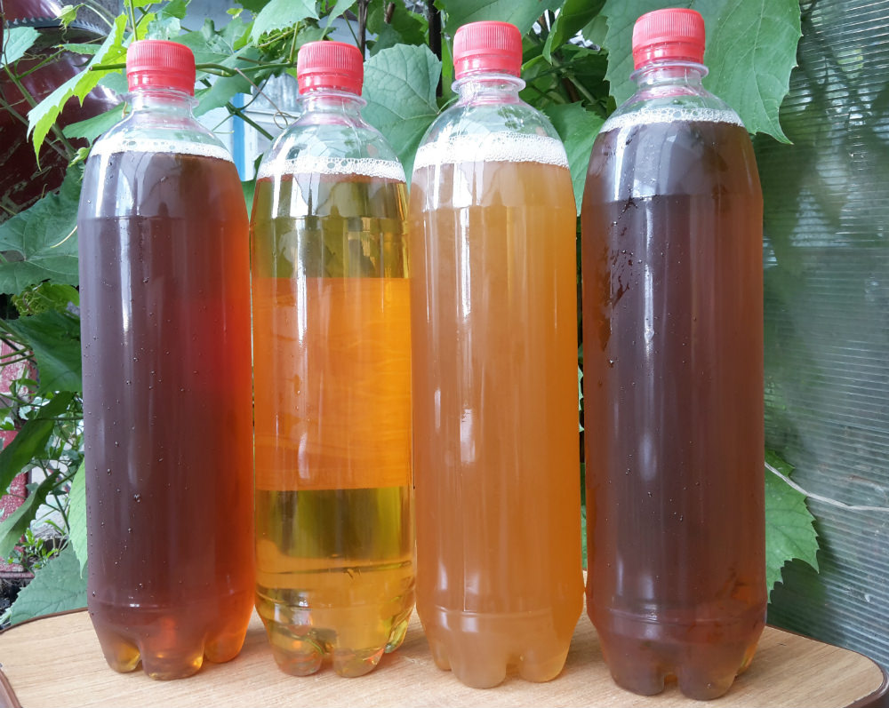 18   рейтинг разливного пива Слева направо: «Пяток», «Владимирское светлое», «Пшеничное», «Экспорт»