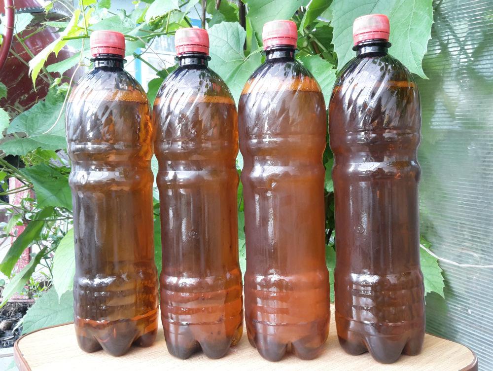 18   рейтинг разливного пива Слева направо: Ezek, «Визит», «Чешское», «Пражское»