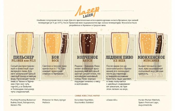 pivovar_vidy_piva_lager