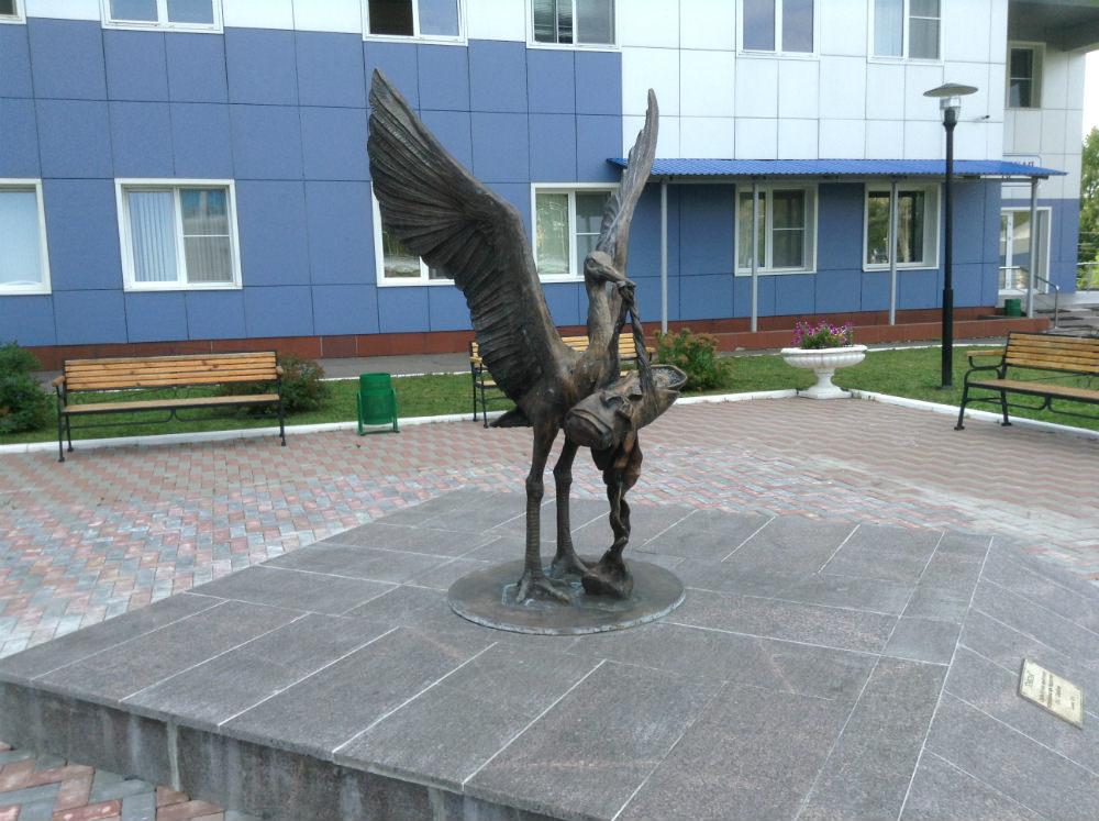Около перинатального центра в Саранске стоит памятник аисту, около роддома на Химмаше — большая бронзовая капуста. Памятника врачу почему-то нет