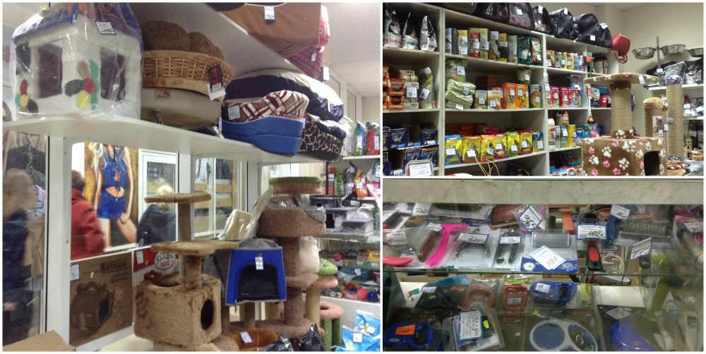 Где купить все   необходимое для кота      b топ 7 зоомагазинов  b  Саранска kot i pes_mini