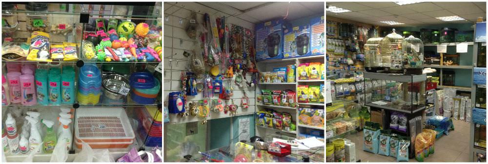 Где купить все   необходимое для кота      b топ 7 зоомагазинов  b  Саранска murena