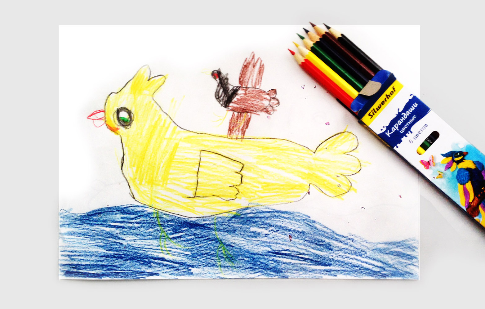 50 nbsp оттенков яркого  ищем   хорошие    цветные карандаши в nbsp Саранске 008