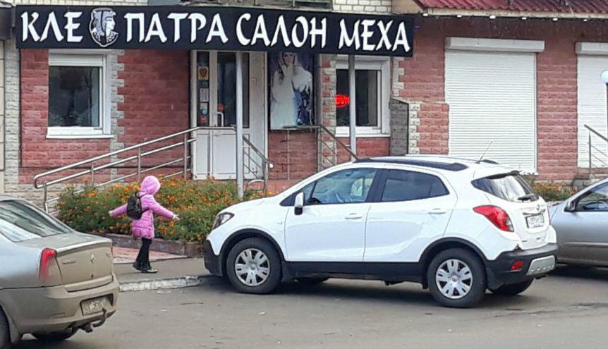 Где в Саранске   можно купить шубу    клеопатра