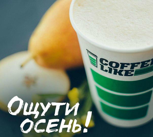 b 15 мест в Саранске  b   где еду и напитки   раздают бесплатно    cmfN0BKmCeg