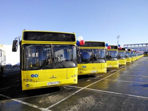 avtobusy