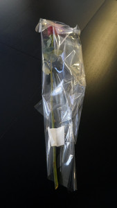 Розы для любимых  инспектируем цветочные магазины Саранска flower_box (2)