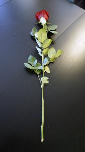 Розы для любимых  инспектируем цветочные магазины Саранска tsvetochnyi_rai (2)