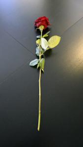 Розы для любимых  инспектируем цветочные магазины Саранска vals_tsvetov (3)
