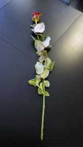 Розы для любимых  инспектируем цветочные магазины Саранска vremeva_goda (3)