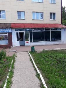 veselovskogo_84