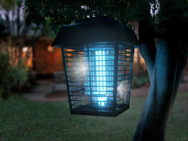 Кровожадный дайджест    11 способов    истребления мух в доме lampa